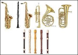 Quel instrument à vent possède une corde ?