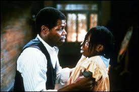Film de Steven Spielberg (1986) sur la difficile émancipation d'une jeune femme noire (Woopy Godberg) dans le sud des Etats-Unis au début du XXe siècle.