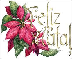 Que veut dire 'Feliz Natal ! ' ?