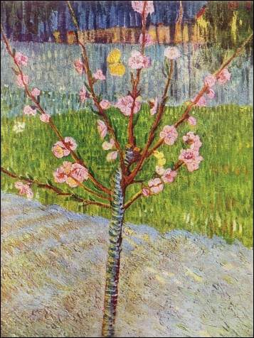 Qui a peint Pêcher en fleurs ?