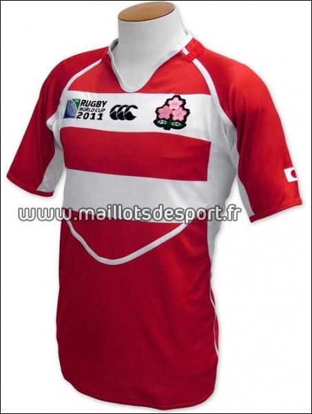 C'est le maillot de l'équipe de Rugby...