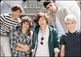 Qui ne fait pas partie des 'One Direction' ?