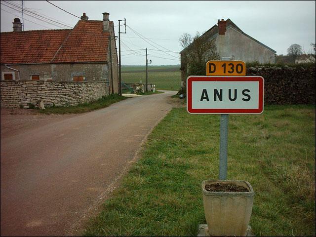 L'anus...