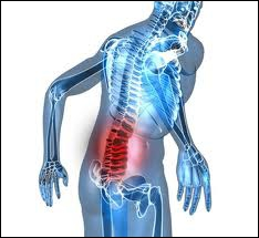 Comment s'appelle la structure cartilagineuse qui assure l'articulation entre les vertèbres et amortit les chocs ?