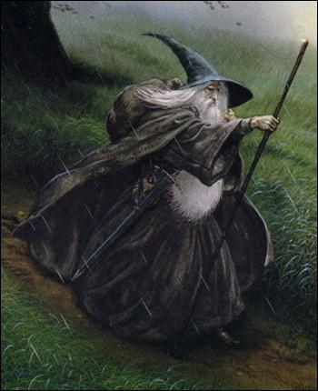 Qui sont réellement Gandalf et Saroumane ?