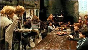 Ou se trouve la famille Weasley ?