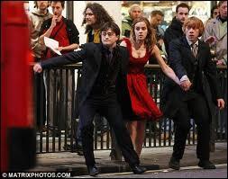 Où Hermione les a-t-elle fait transplaner ?