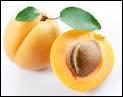 Quel terme désigne, parmi les trois suivants, le noyau des fruits ?