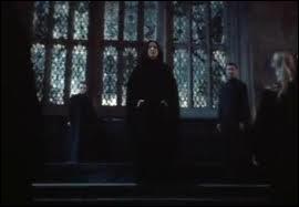Qui sont les mangemorts autour de Severus Rogue qui ont été nommés professeurs par Voldemort dans le tome 7 ?