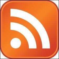 Ce logo de réseaux sociaux s'intitule ...