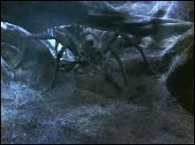 Quel sortilège Harry et Ron ont-ils utilisé contre les enfants d'Aragog l'Acromentule ?