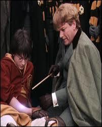 A cause de quel sortilège Harry a-t-il perdu les os de son bras ?