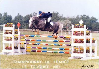 Combien de points perd le cavalier si le cheval fait tomber une barre lors d'un concours de saut d'obstacles ?