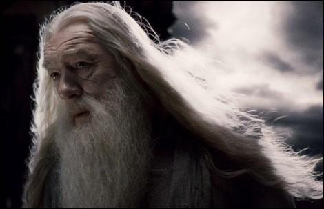 Quel professeur succède à Dumbledore ?