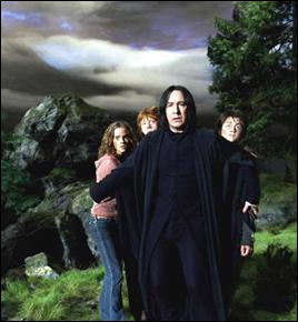 Durant la cinquième année de Harry Potter, Rogue devient, un temps, son professeur particulier. Quelle matière lui enseigne-t-il ?