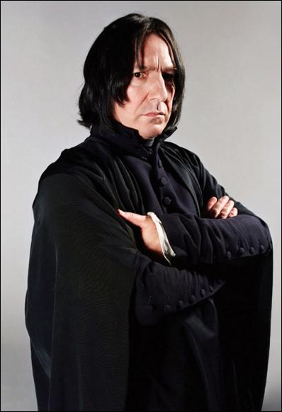 Quel nom portait le quartier où Severus à grandit, et où il rencontre pour la première fois, Lily Evans ?