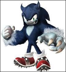 Une malédiction provoqué par Eggman dans Sonic Unleashed :
