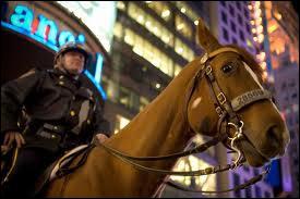 Je fais la sécurité à cheval. Qui suis-je ?