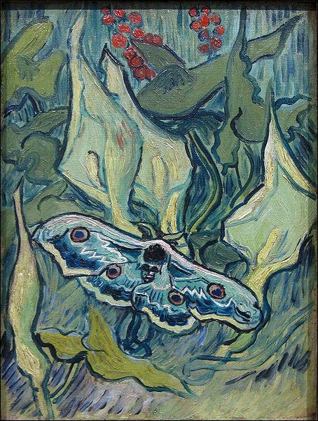 Ce tableau a pour titre Sphinx à tête de mort, il s'agit du papillon, mais celui-ci est posé sur des callas. Qui est le peintre ?