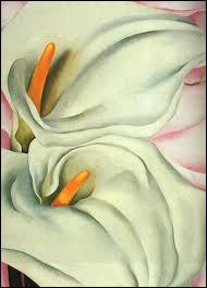 De magnifiques callas blancs peints par ?