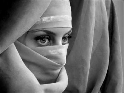 Qui s'en prend à la soeur de Saladin ?