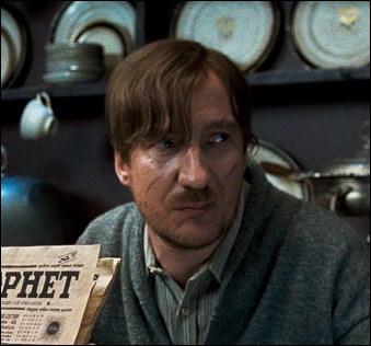 Dans Harry Potter et les Reliques de la Mort, durant le chapitre 'Les sept Potter', avec qui est-il sur le balai ?