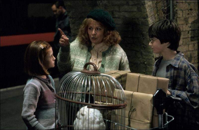 Quand rencontre-t-elle Harry Potter pour la première fois ?