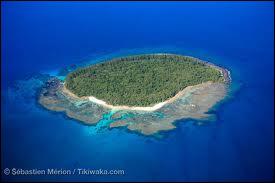 Quelle fut l'une des dernières îles à êtrecolonisée par l'homme ?