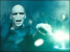 A la fin du film Harry se bat contre...