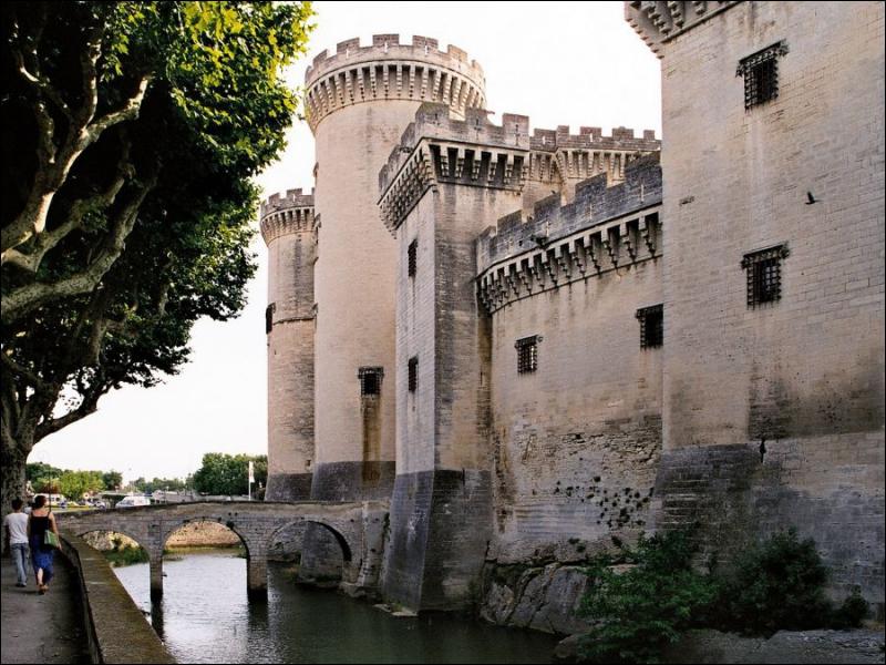 Ce château est un des plus beaux châteaux médiévaux de France et d'Europe construit au XVe siècle par les ducs d'Anjou, comtes de Provence.