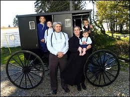 La communauté Amish est située aux Etats-Unis. Elle vit de façon sommaire, sans eau ni électricité, coupée du monde moderne. Comment s'appelle leur carriole traditionnelle tirée par un cheval ?