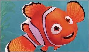 Comment s'appelle ce poisson clown qui a une nageoire handicapée ?