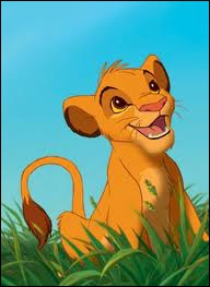Comment s'appelle ce lionceau qui s'est enfui en croyant avoir tué son père ?
