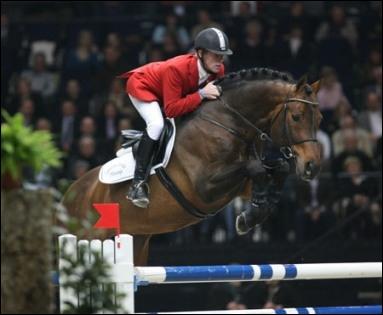 Quizz les chevaux c l bres de concours de saut d 39 obstacles quiz chevaux - Coupe du monde de saut d obstacle ...