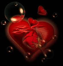 Le coeur est classé dans quelle catégorie de muscles ?