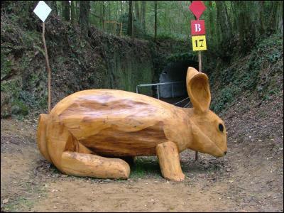 Le Mondial du Lion est une compétition sportive organisée chaque année dans la ville Le Lion-d'Angers, en Maine-et-Loire. Quel sport est-il concerné ? (la photo représente un obstacle sur le parcours)