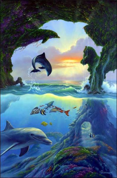Combien y a-t-il de silhouettes de dauphins sur cette image ?