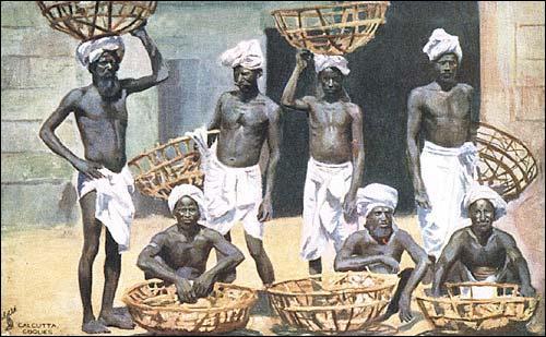Dans le système colonial, la population indigène ne peut pas servir de : (Illustration les coolies (porteurs) de Calcutta en 1901.)