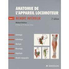 Anatomie et santé du corps humain (8)