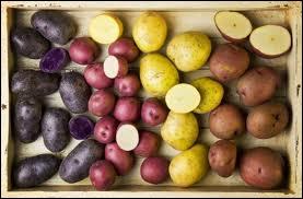 Pommes de terre cuites à l'eau avec leur peau, fleur de sel, beurre frais...