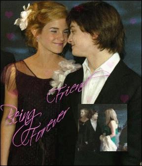 A t'il aimé embrasser l'actrice Emma Watson sur le tournage de Harry Potter et les reliques de la mort ?