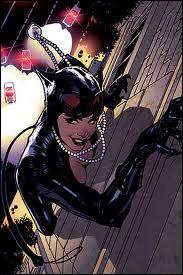 Pourquoi Catwoman est-elle recherchée par la police ?
