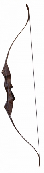 Pourquoi a-t-on créé les arcs ?