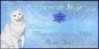 Qui est la mère de Flocon de Neige ?
