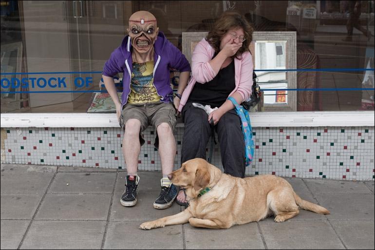 Un chien ne connaît pas la peur !