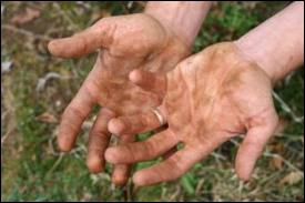 Ces mains vous évoquent inévitablement quel auteur ?