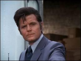 Dans quelle série policière diffusée sur CBS de 1968 à 1980 pouvait-on voir Steve McGarrett ?