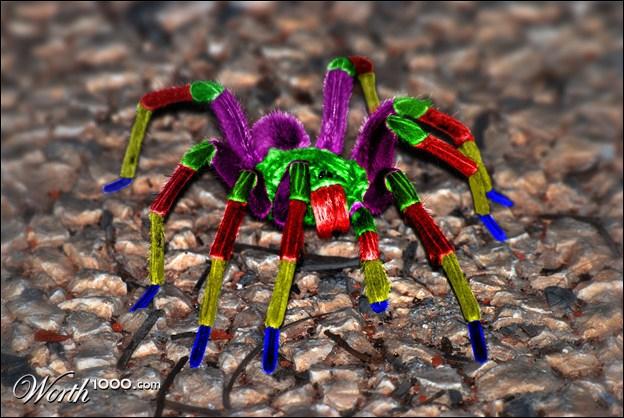 Cet animal est capable de faire la même chose que cette araignée factice, changer de couleur !