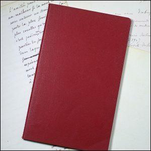 Qui a-t-il dans le petit carnet rouge que le docteur Moriarty porte toujours sur lui :