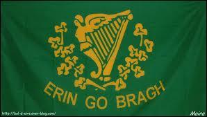 Elle s'appelle Eithne Patricia Ní Bhraonáin mais vous la connaissez mieux sous le nom de ...